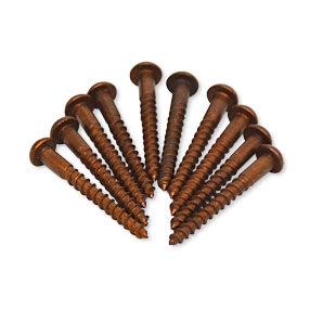 10 small aged brass decorative screws No.6 x 1¼