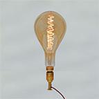 Decorative curly filament bulbs