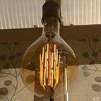 Gold giant filament light bulb