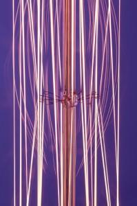 purple led filament